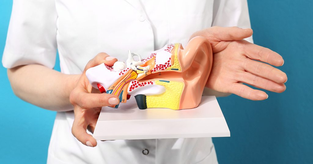 scientists work to find cure for hearing loss